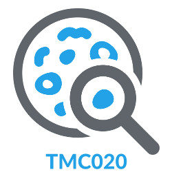 TMC020: Pathology with Dr Shane Battye